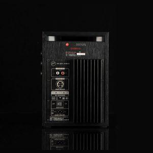 SWANS-D1080-IV-active-speakers-monitors
